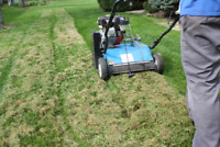 ~ Special ~ Spring Clean Up - Power rake, vac and Aeration