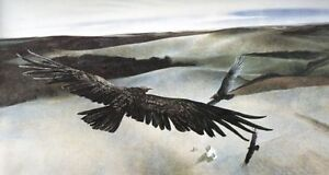 SOARING - Andrew Wyeth - Out Of Print - $100