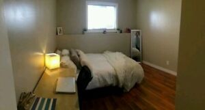 2 rooms clean quiet female student  only
