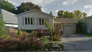 1 Bedroom Basement Apartment Available Oct 1st on Allison Place