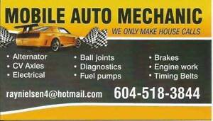 """Ray"" Pro-Mobile Mechanic - 518-3844"
