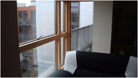 1 bedroom apartment in a heart of a city center S1