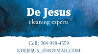 De Jesus Cleaning - house/apartment/condo cleaning