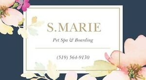 S.Marie Pet Spa & Boarding