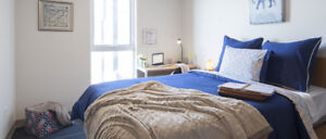 Sublet - male - 5 min walk to U of T campus -  U of T affiliated