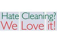 Need A Cleaner/Housekeeper?