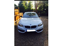 Bmw 2 Series 218D Sport Red Nappa Leather