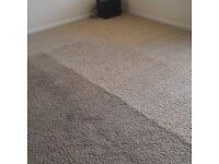 PROFESSIONAL CARPET CLEANING AND GROUT RENEW.