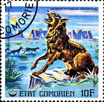 Tieren und Pflanzen auf der Spur – Briefmarken mit dem Thema Natur und Umwelt sammeln