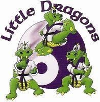 Little Dragons Kids Martial Arts 4 - 6yo