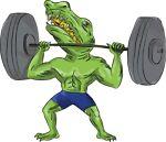 gecko_supplements