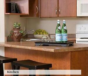 FREE Promo, Condo style suites, contemporary features... Edmonton Edmonton Area image 7