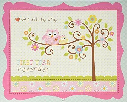 Babies First Year Calendar-Happy Baby Girl-CR Gibson Baby Girl,Owl, Milestone