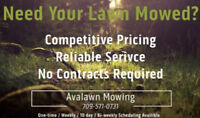 Lawn mowing services at great prices!