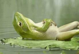 *Full body massage*