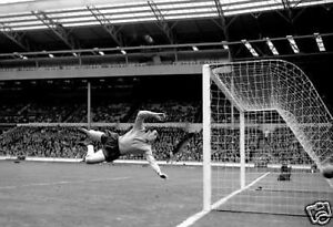 Gordon-Banks-Diving-Awsome-England-10x8-Photo