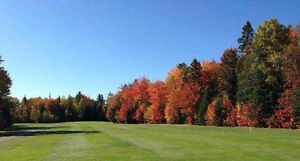 Golf Course 10 holes on 235 acres in Sault Ste Marie