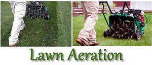 Lawn Aeration De Thatch Fertilizing Mowing Grass Seeding Cutting
