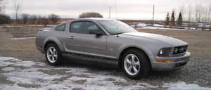 2008 Ford Mustang V6 low km