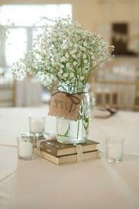 Affordable Wedding Decor Oakville / Halton Region Toronto (GTA) image 1