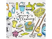 Expert detailed cleaning and ironing services