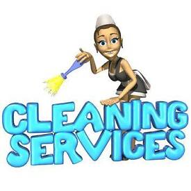 Domestic Cleaning and ironing services/ Cleaner/Housekeeper