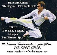 1-WEEK FREE - TAEKWONDO - BEGINNER CLASSES