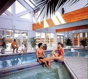 Selling my week 51 Timeshare in Banff Strathcona County Edmonton Area image 8
