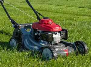 Looking for mower deck