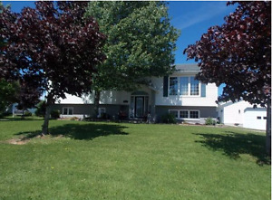 Beautiful home in quiet subdivision in Newcastle area