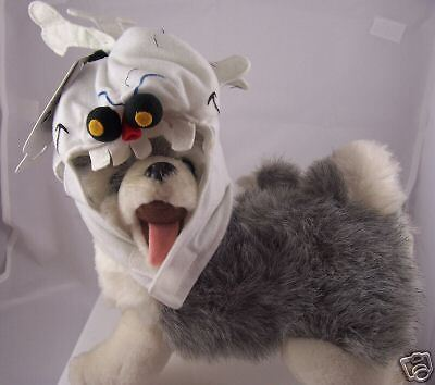 Skeleton Bones Doggy costume dog cat clothe Halloween M](Cat Skeleton Costume)