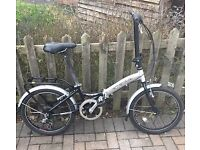 Lovely adults folding bicycle