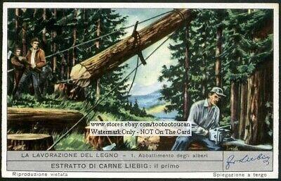 Old Time Logging Cutting Timber Wood Mill 60 Yo Trade Ad Card