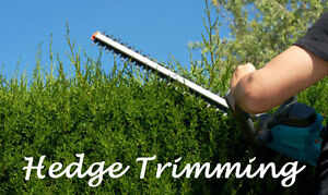 SPRING HEDGE TRIMMING - RELIABLE AND FAST SERVICE