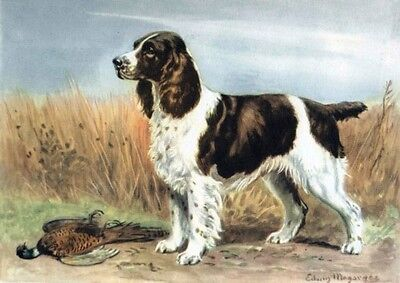 Megargee~English Springer Spaniel Puppy Dog~Pheasant Game~ NEW Large Note Cards