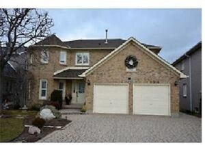 Beautiful house without bsmt for decent family after Mar 1