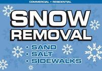 Residential Snow Removal Company accepting contracts 2015-2016