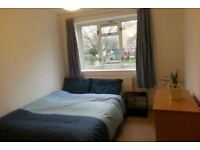 Large Double Room in Lovely Garden Flat