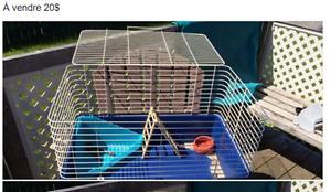 Cages pour petit animal