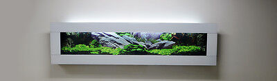 3FT 900mm WHITE DESIGNER ARTISTIC WALL AQUARIUM FISH TANK LIVE ART FISHTANK