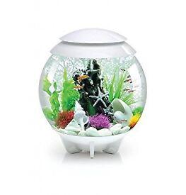 White Biorb LED 30L Aquarium fish tank with extras