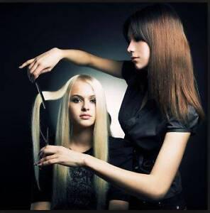 Hip Boutique Hair Salon For Sale Bondi Eastern Suburbs Preview