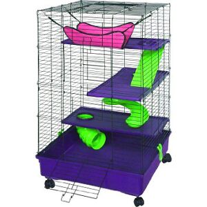 2 Ferrets & Cage For Sale