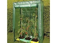 NEW heavy duty greenhouse, , £21.99 on Amazon