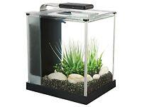 Fluval Spec 10L Aquarium/Fish Tank