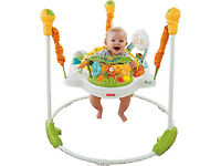 Fisher Price Jumperoo, excellent condition.