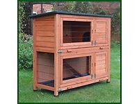 Rabbit/Guinea pig hutch - used - suitable for outdoor or indoor use but has always been indoors