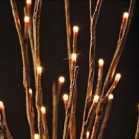 Brand new Lights Branches