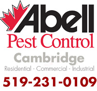 Guaranteed Pest Control Services for Cambridge/519-231-0109