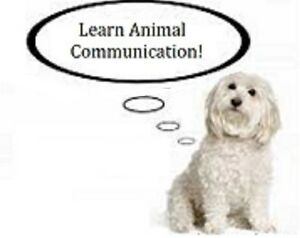 Learn Animal Communication